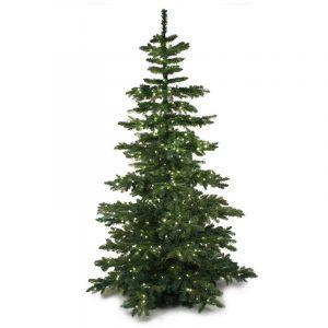 Weihhnachtsbaum